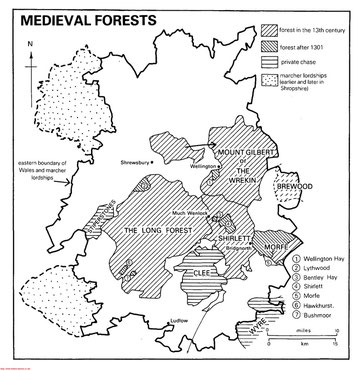 mmap of medieval forests